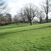 Broomhill Common