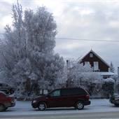Whitehorse Winter Street Scenes