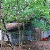 8080   Barn   House   Pool   Parking   Forest