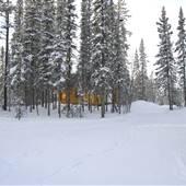 Yukon Forest Cabins