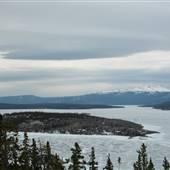Tagish Lake May