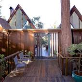 Modern Private Home with Trees