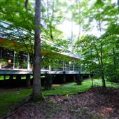 Virginia West - A Modern Treehouse