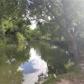DoveCreek Texas
