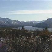 Mt MacIntyre Road
