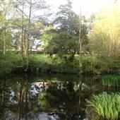 Husseywell Park