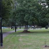 Rush Common