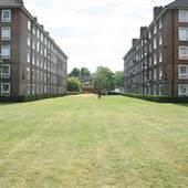 Rodney Estate