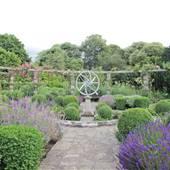 Ravenscourt Park - Flower Garden