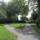 Avondale Park - Main Area