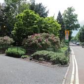 Bishops Park - Bishops Avenue
