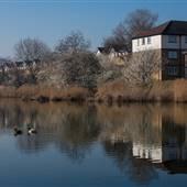 Thamesmead - Birchmere Park
