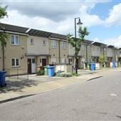 Peckham Grove