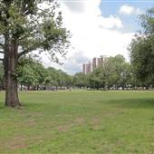 Shepherds Bush Common