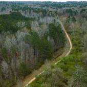 Georgia Backcountry