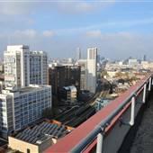 Albert Barnes Rooftop