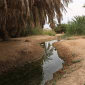 Well of Moses - عين موسى