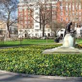 Tavistock Square Gardens