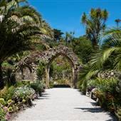 Tresco Abby Gardens
