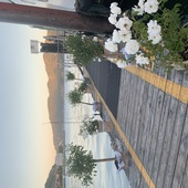 Boat Dock and Deck in Tiburon