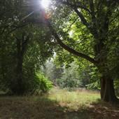Gunnersbury Park Gardens